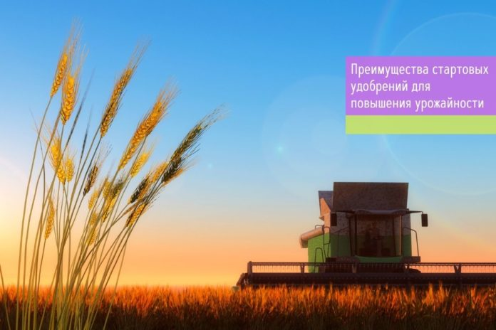 Преимущества стартовых удобрений для повышения урожайности